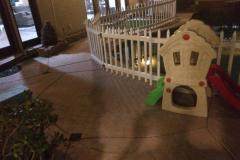 fays-loving-pet-care-dog-cat-boarding-care-tarzana-ca-11