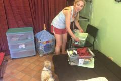 fays-loving-pet-care-dog-cat-boarding-care-tarzana-ca-27