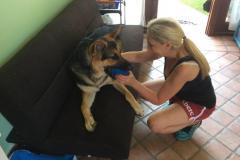 fays-loving-pet-care-dog-cat-boarding-care-tarzana-ca-8